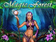 Magic Forest для новичков онлайн